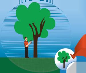 ISA_Certified_Arborist_Company